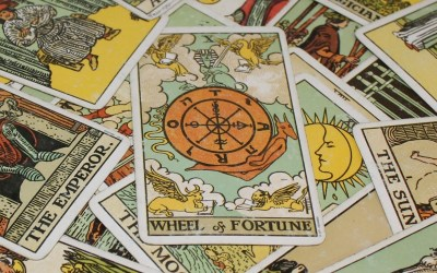 My Wheel of Fortune Year