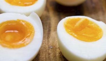 Δίαιτα του αβγού