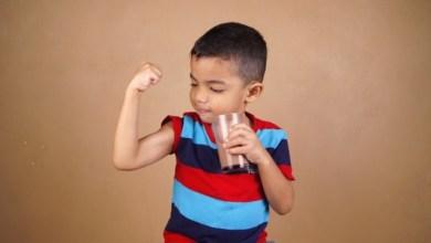 fungsi laktosa pada susu