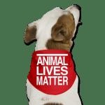 AnimalsMatterScarf500x500