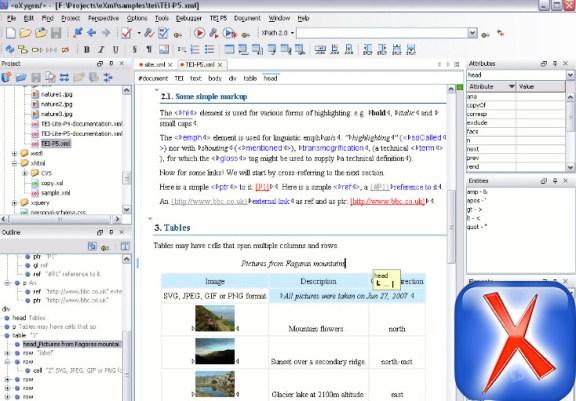 Oxygen XML Editor Crack