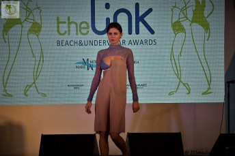 The Link Awards (16)
