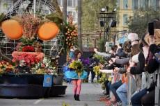 Bataille de fleurs