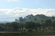 Valley of a Thousand Hills - Strath Creek Region Country Victoria -Aust. 2010 Photo 10 Photographed by Abstract Artist: Karen Robinson NB: All images are protected by copyright laws!