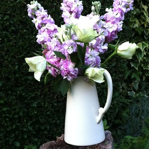 Cream china jug