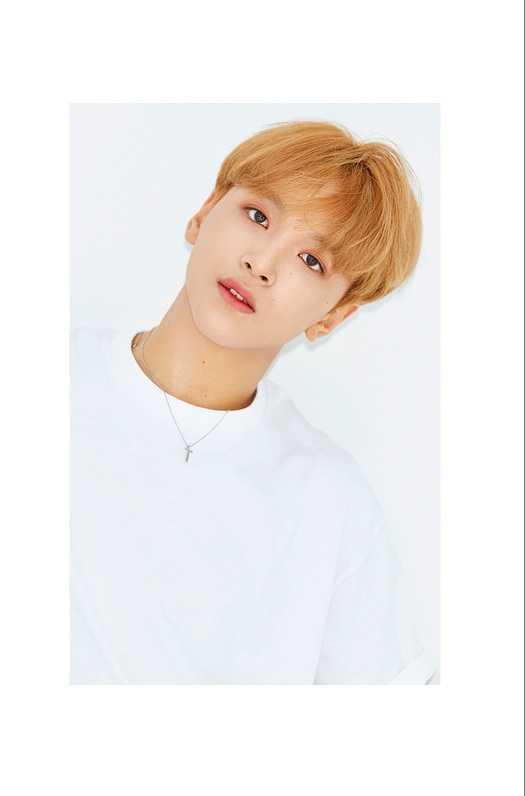 Idol thông tin thành viên haechan NCT Dream