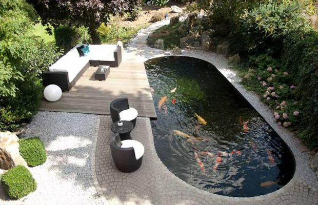 Koi Pond Shade Ideas