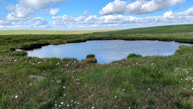 Sea Vixen pond on Flat Tor