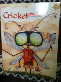 """On Uppermost Winds (Part 2)"" -- Cricket Magazine"