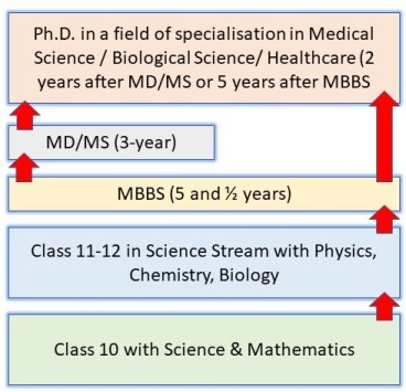 How to Become a Scientist in India: Pathway 9