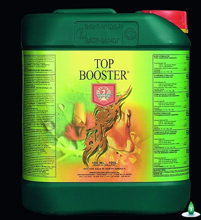 H&G - Top Booster