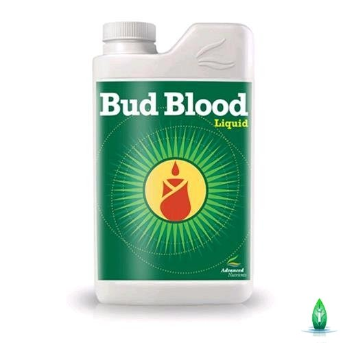 bud-blood