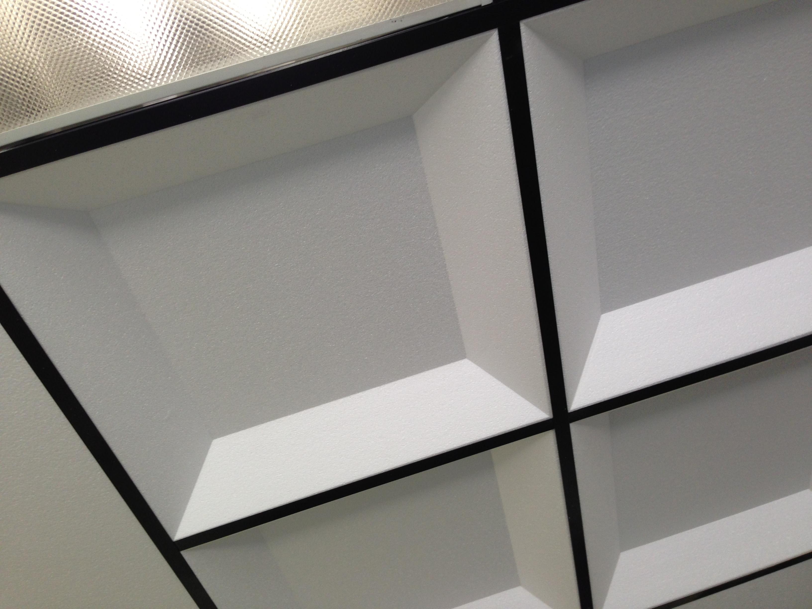 ceiling tiles  IDS Group  httpwwwIDS2GOcom