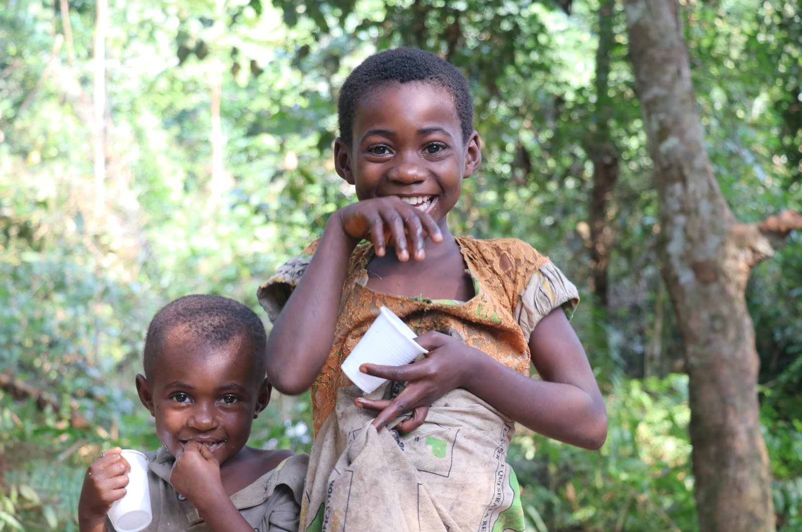 Find many great new & African Pygmies Preserve Their Ancient Culture Lifestyle Daily Sabah