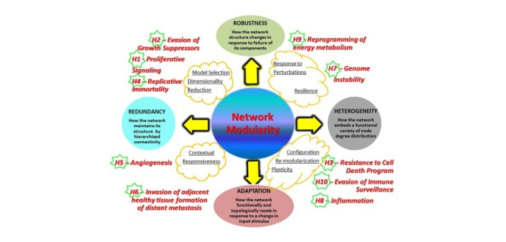 Network Modality: Figure 2. Network modularity and properties. Modularity is key, and properties are indicated and defined (circles). The yellow clouds include action guidelines enabled by network inference. Robustness brings better stability of modular configurations, inducing resilience. Biotype heterogeneity can be handled by configuration plasticity and ability to re-modularize, leading to better adaptation to change of conditions in a contextual way. Possible redundancy can be tackled by dimensionality reduction and model selection. An adjustment of the basic network structure presents the advantage of optimizing the fit of individual traits (personalized therapy approaches). Cancer hallmarks (H1… H10) are mapped and positioned in correspondence with network properties that most suitably refer to them.