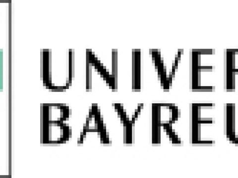 Neuartige Helfer für die Biomedizin: Magnetische Nanopartikel aus Bakterien