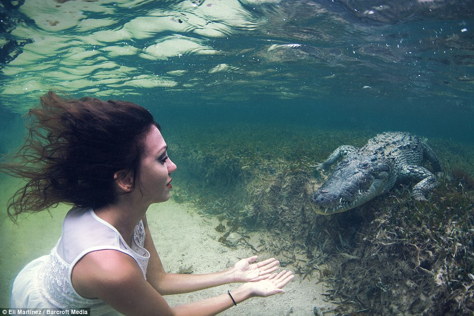 Face to face photo shoot with crocodile