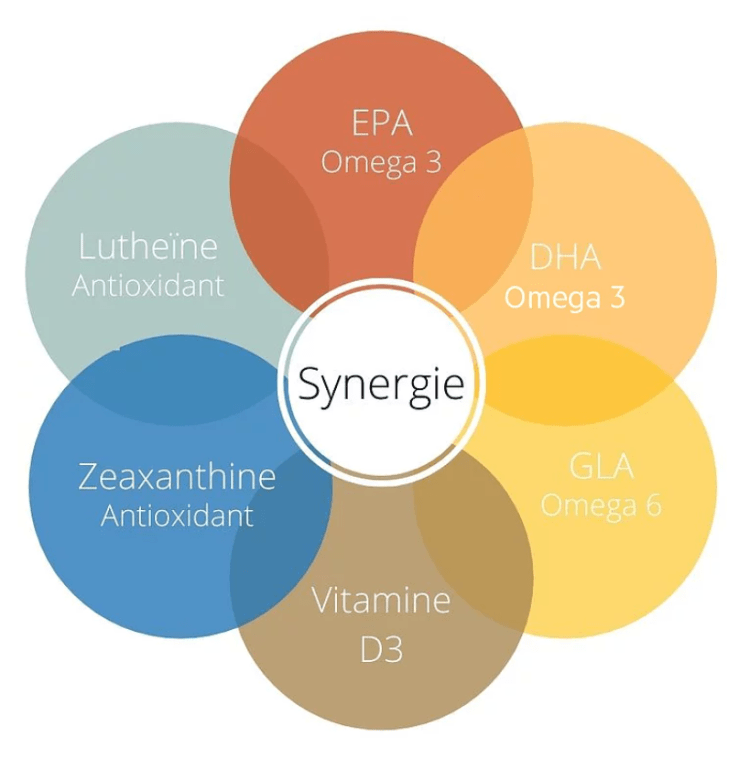 synergie Bend