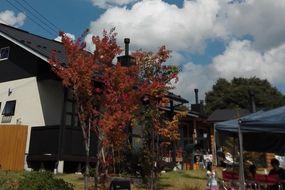 秋の味覚イベント