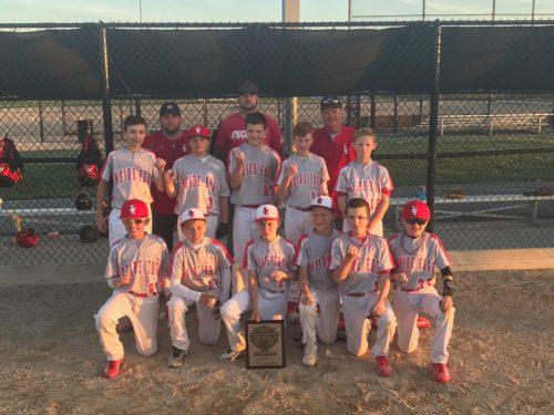 IE-Baseball-12-White-Runnerup
