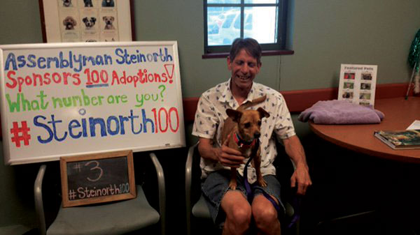 courtesy photo/roleeda statham/twitter    Brody was among the many pets who found a forever home during last year's Steinorth 100 free pet adoption fair. This year's event runs Aug. 5-7.