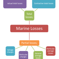 What are the Types of Marine Losses