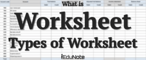 What is Worksheet: Types of Accounting Worksheet