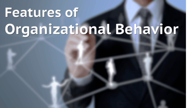 Organizational Behavior Features