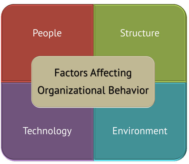 Key Forces Affecting Organizational Behavior