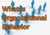 Organizational Behavior: Definition, Importance, Nature, Model