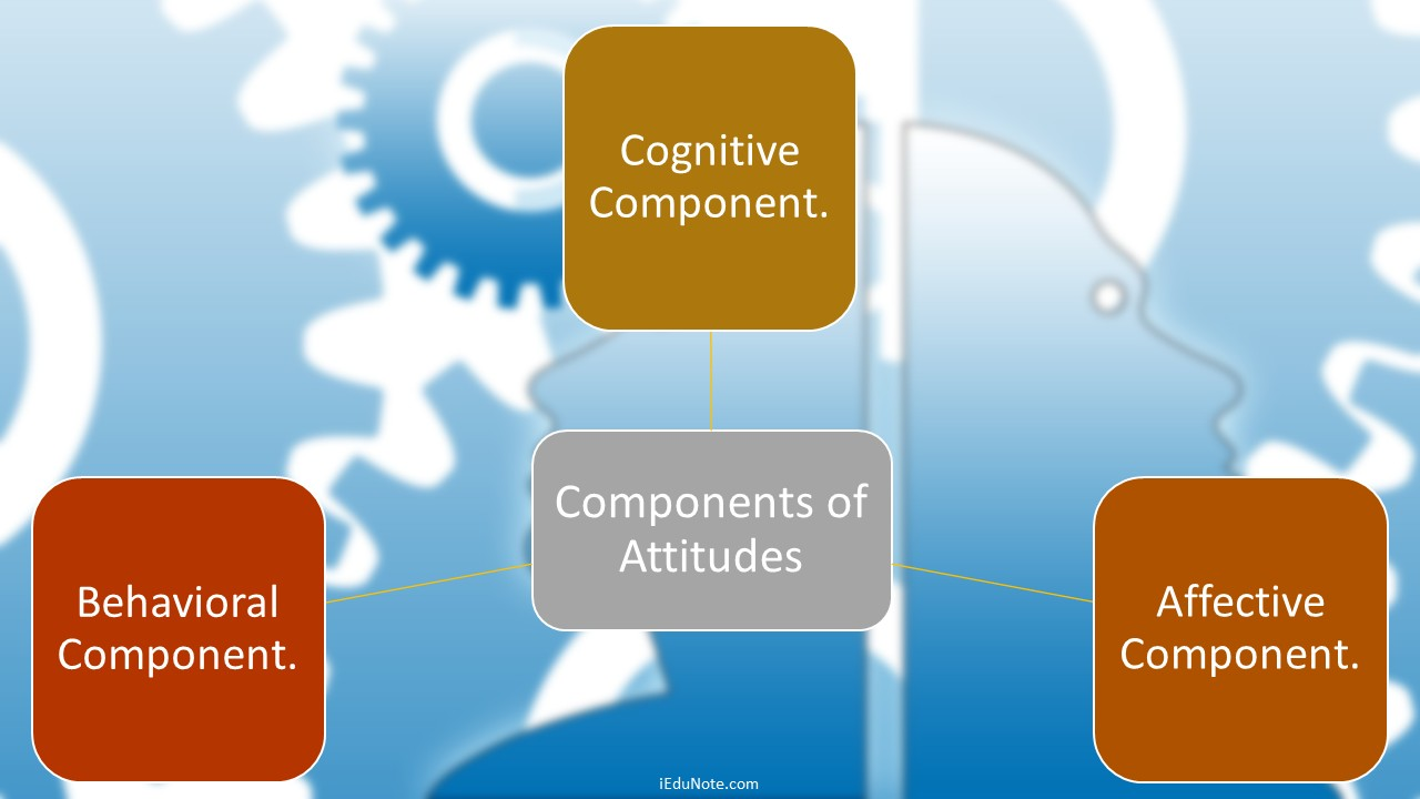 3 components of attitudes explained ccuart Images