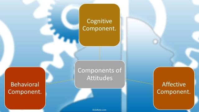 Components of Attitudes