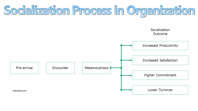 Socialization Process in Organization