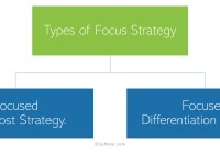 Focus Strategy: Meaning, Types of Focus Strategy