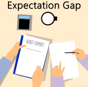 Expectation Gap in Audit