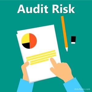 Audit Risk
