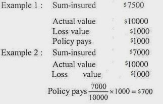 What is Principle of Indemnity in Insurance