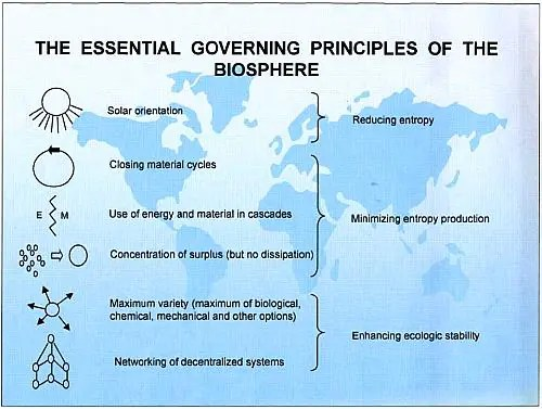 governing principles biosphere