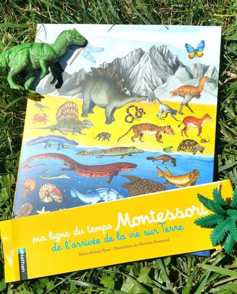 Ma Frise Du Temps Montessori : frise, temps, montessori, Ligne, Temps, Montessori, L'arrivée, Terre...Grande, Frise, Compléter.