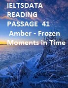 IELTSDATA READING PASSAGE  41 Amber - Frozen Moments іn Time