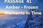 IELTSDATA READING PASSAGE 41Amber - Frozen Moments іn Time