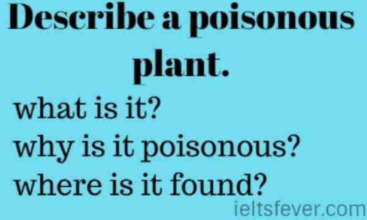 Describe a poisonous plant. vegetation