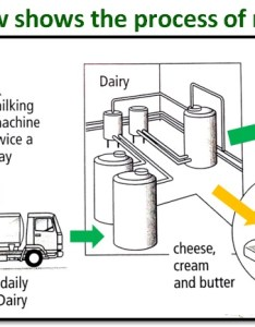Milkproduction also ielts writing task flow charts and processes  step by rh ieltsintaiwan wordpress