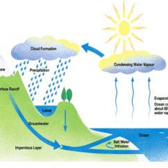 Explain Water Cycle With Diagram The Cask Of Amontillado Story Ielts Academic Writing Task 1 (process) & Band 9 Model Sample