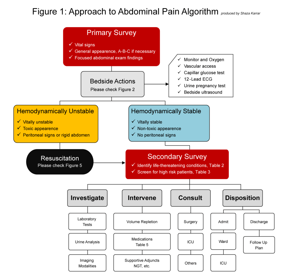 medium resolution of primary survey hemodynamic stability assessment subsequently sets the pace of your approach figure