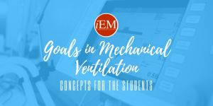 Goals in Mechanical Ventilation: Concepts for the Students