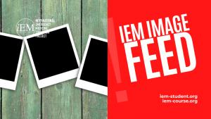 iem image feed