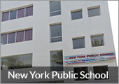New York Public School