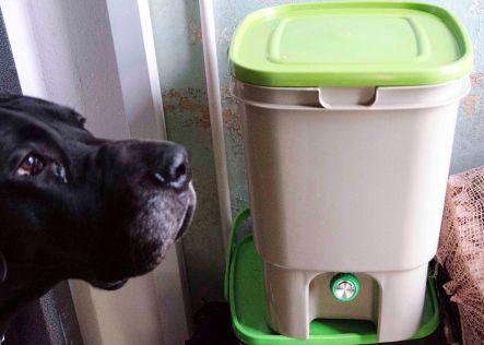 Og forresten; hunder elsker Bokashi. Pass på dersom du graver ned bokashi i blomsterbedet og har en firbent venn i nærheten.