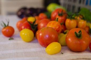 tomater_hoste